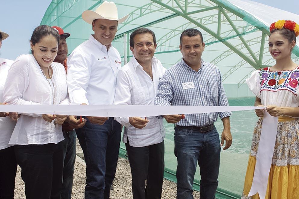 Photo of En Gira de trabajo por Nayarit se ponen en marcha planta de camarón y se da banderazo a producto de exportación a Europa