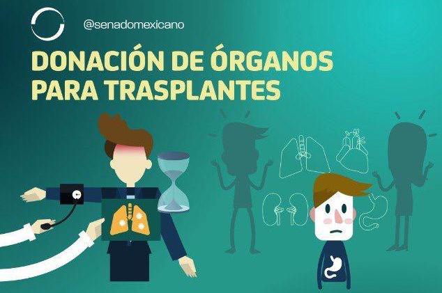 Photo of Donación de órganos para trasplantes