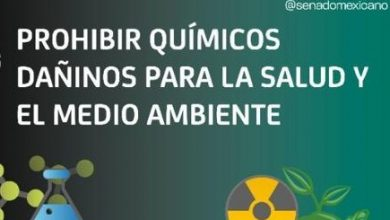 Photo of Prohibir químicos dañinos para la salud y el medio ambiente