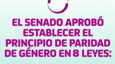 Photo of El Senado aprobó establecer el principio de paridad de género en 8 leyes: