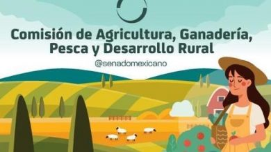 Photo of Comisión de Agricultura, Ganadería, Pesca y Desarrollo Rural