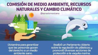 Photo of Comisión de Medio Ambiente, Recursos Naturales y Cambio Climático