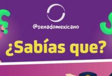 Photo of ¿Sabías que? El Gobierno regulará la estancia temporal de personal extranjero que realice actividades policiacas o de supervisión en territorio mexicano