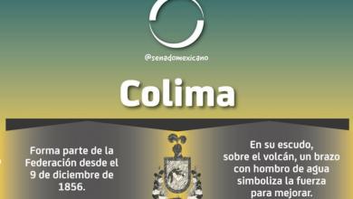 Photo of Colima, representación senatorial
