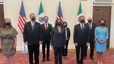 Photo of La visión del HLED